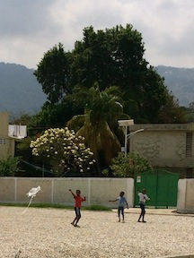Kite Flying in Delmas 24